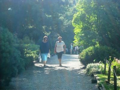 2016-09-09 - Dolny Śląsk - Arboretum